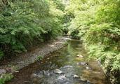 庭園にかかる川